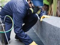 Pest & Vektör Kontrol ( İlaçlama Hizmetleri )